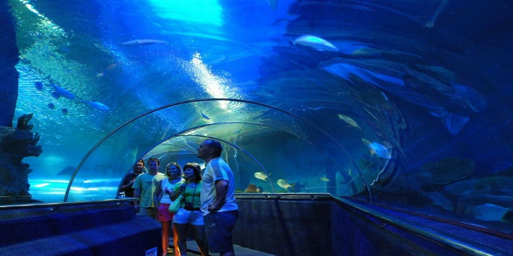 OCEANOGRAPHIC MUSEUM. The National Oceanographic Museum is located 5 kilometers from the center of Nha Trang in a French colonial building. Museum explores marine life through artifacts & displays.