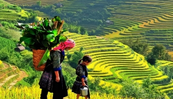 Group tours Hanoi - Sapa